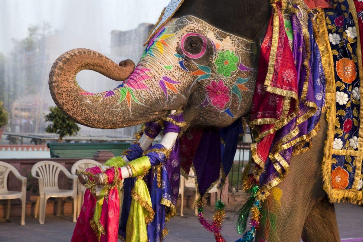 blog-da-patricia-caetano-india-lazertur-agencia-de-viagens-turismo-foto-divulgacao-capa1
